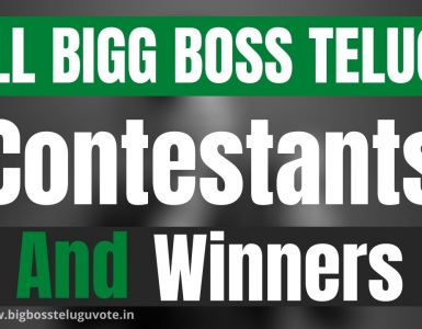 All Bigg Telugu Contestants and Winners Season Wise